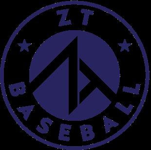 ZT Footer Logo